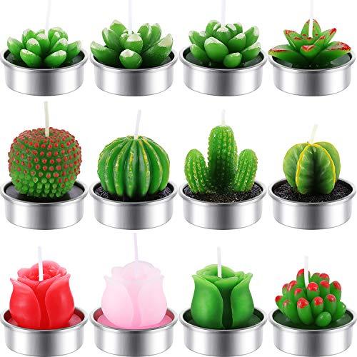 12 Stücke Kaktus Teelicht Kerzen Handgefertigt Zart Saftig Kaktus Kerzen für Party Hochzeit Spa Dekoration Geschenke (Stil D) - Handgefertigte Tische