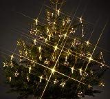 Trango TG340146 24x LED Weihnachtskerzen mit Stecksystem Innenbereich warm-weiß