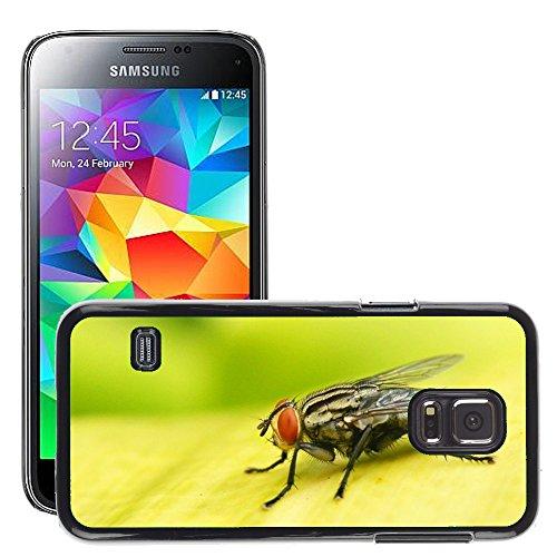 Grand Phone Cases Bild Hart Handy Schwarz Schutz Case Cover Schale Etui // M00142544 Insekt-Wanzen-Fly // Samsung Galaxy S5 MINI SM-G800 (Fly Cover Samsung S5 Mini)