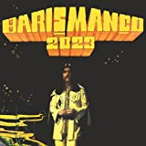 2023 [Vinyl LP]