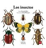 Los insectos: 5 (Naturaleza)