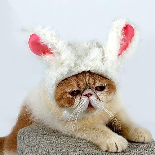 Aihifly Nachahmung Filz Pet Kostüm Lion Mähne Perücke für Katze Halloween Xmas Kleidung Kostüm Straße Cat Tunnel Cat Toy Play Tunnel (Design : D2)