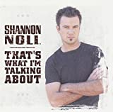 Songtexte von Shannon Noll - That's What I'm Talking About