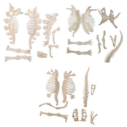ROSENICE Dinosaurier Fossil Skelett Dinosaurierskelett Puzzle Modell Spielzeug - 3 Stücke
