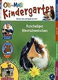 OLLI UND MOLLI Kindergarten  Bild