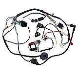 Ocamo für 507090110cc ATV Quad Gokart Full Elektrik Kabelbaum Coil CDI, Verkabelung Set