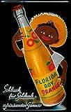 Florida Boy Orange Blechschild 20 x 30 cm