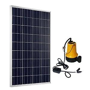 ECO-WORTHY – Panel solar con bomba de agua para lavar el coche (100 vatios)