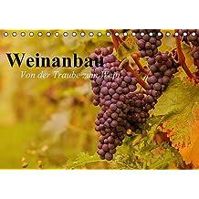 Weinanbau. Von der Traube zum Wein (Tischkalender 2017 DIN A5 quer): Schöne Impressionen vom interessanten Weinbau (Geburtstagskalender, 14 Seiten ) (CALVENDO Natur)