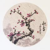 """KZ154 Hmay Jingxian Raw Xuan Paper Pre-mounted On Soft Card / Chinese Shikishi for Sumie Painting and Brush Calligraphy 10 Sheets Mixed Package (Square 33 cm, 12.99"""")"""
