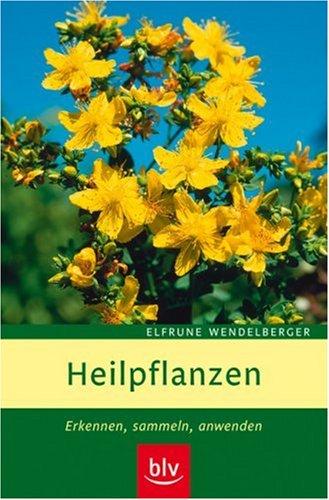 Heilpflanzen: Erkennen, sammeln, anwenden