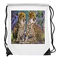 Bunny Organization Sensational Cheetah Couple Side By Side HD Sunshine Colourful Fur Body Affect Mammal Animal Lovers Drawstring Folding Gym Bag Perfect for PE School Work Travel Sports