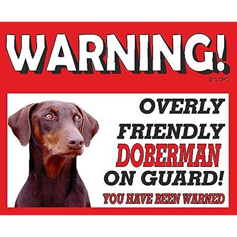 Doberman (perro marrón) perro guardián de muestra 93