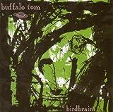 Songtexte von Buffalo Tom - Birdbrain