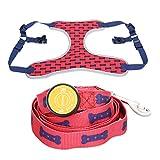 Amody Hund LED Leuchten Beleuchtung Verstellbare Halsband Geschirr Leine für Training zu Fuß Laufen Rot S