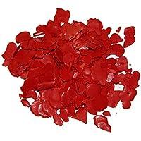 Tanja Schulz Kerzenfarbe Pigment rot - 10 g (FW-9)