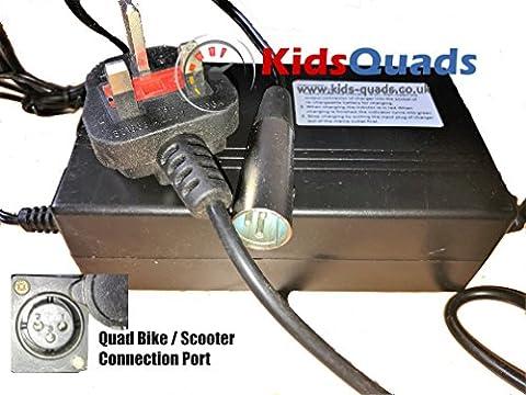 Electric Battery Charger for Kids Quad Bike Mini ATV 36v 1.5A HIGH QUALITY