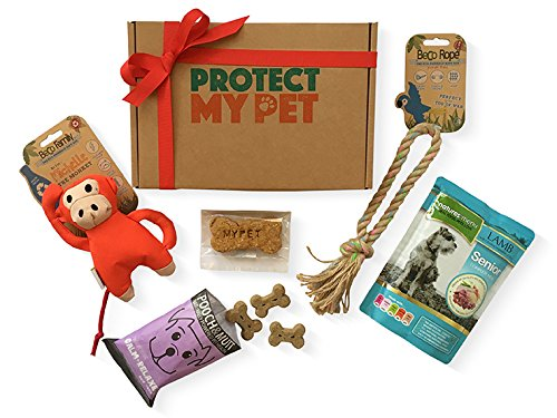 Protect My Pet Dog Gift Box filled with Natural & Ethically Sourced Treats & Toys