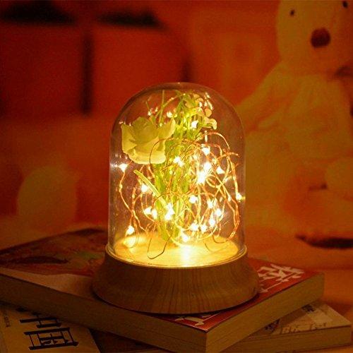 OOFAY Luce Bambini Luci Solari in Barattoli di Vetro Luce Notturna LED Decorazione Giardino, Cerimonia, Festa, Vacanza Lampada(Tramite Cavo USB)