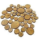 Baoblaze 20/50er Pack Holzscheiben Holz Scheiben Verzierungen runde Holz Stücke für DIY Handwerk Hochzeit Deko - Farbe 1, 50pcs 2-4cm