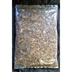 E-Coco Products UK MONITOR LIZARD SUBSTRATE, BEDDING FOR MONITOR LIZARDS ENCLOSURE, VIVARIUM (5 LITRES) 6