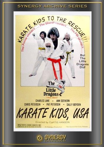 karate-kids-usa-edizione-francia