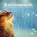 Katzenmusik - Entspannungsmusik für Katzen und Andere Haustiere, Instrumentale Wiegenlieder