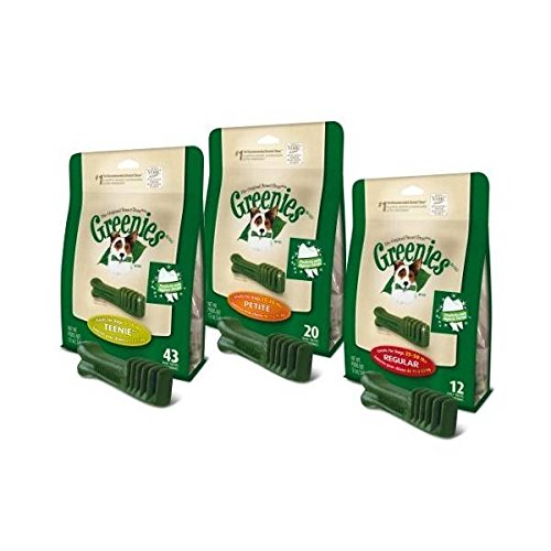 Greenies Snack Dental para Perros Regular