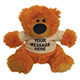 Large Personalised Teddy Bear with t-shirt - Baby Gift newborn - any text or pic on front only