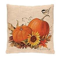 Youngnet Halloween Decor Pillow Case Cushion Cover 45*45cm (#4)