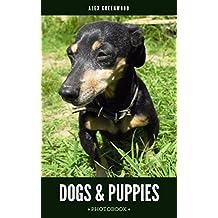 Dogs & Puppies: Photobook (English Edition)