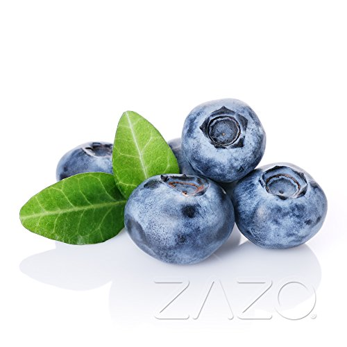 Blueberry Liquid 10ml für E-Zigarette/Shisha / 0mg Nikotin (Blueberry Shisha)