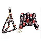 Treat Me 丨Hundegeschirr mit Leine Comic Muster Brustgeschirr Einmaliges Design Soft Geschirr Welpen set für Kleine Mittele Hunde