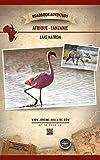 Lac Natron Tanzanie Afrique: Mini Roadbook Adventure (Edition Française) (French Edition)