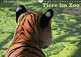 Tiere im Zoo (Wandkalender 2016 DIN A4 quer): Eine Jahresreise durch den Zoo, jeden Monat ein anderes Tier. (Monatskalender, 14 Seiten) (CALVENDO Tiere)