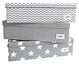 Minene Uk Boîte de rangement sous lit avec couvercle à pois, grande, gris