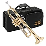 Jean Paul USA TR-330 Standard Schüler-Trompete
