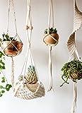 Macrame Plant Hanger arazzo da parete fioriera cestino corda di cotone Home Decor, 76,2cm l