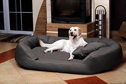 Tierlando Sv5 02 Orthopedic Dog Bed Sammy Visco Robust Gr Xxl