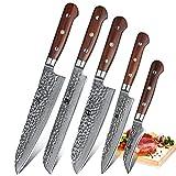 XINZUO 5 Piezas Set Profesional Cuchillo Cocina, 67 Capas Acero de Alto Carbono Damasco Cuchillo Chef Cuchillo Santoku Cuchillo de Pan con Rosewood Mango - Yun Serie
