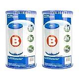 INTEX Lot de 2 Cartouches de Rechange pour Pompe à Filtre de Piscine Type B