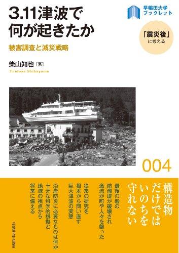 3.11 tsunami de nani ga okita ka : higai chōsa to gensai senryaku