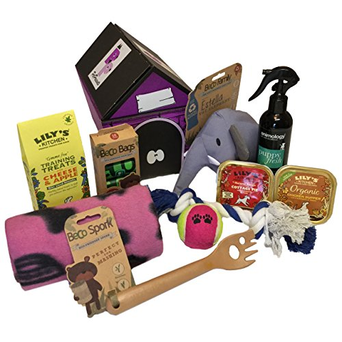 Puppy Gift Hamper - Pink