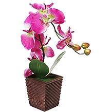 Fiore Phalaenopsis Orchidea Falena Decorativo Sintetico viola Artificiale in Seta con Supporto - MyGift