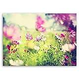 ge Bildet hochwertiges Leinwandbild Pflanzen Bilder - Frühling - Blumen Natur Wiese rosa pink bunt - 70 x 50 cm einteilig 2206 L