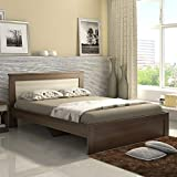 Spacewood Denver Queen Size Engineered Wood Bed (Woodpore Finish, Moldau Akazia)