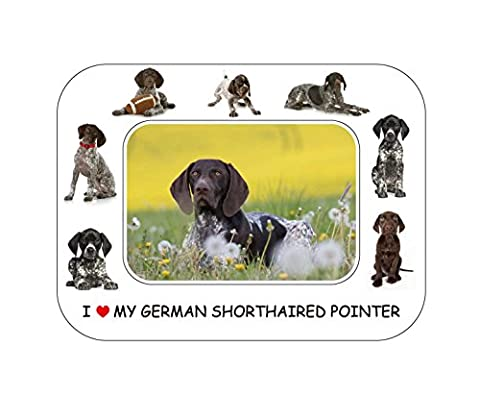 German Shorthaired Pointer Gift - Beautiful 8
