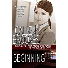Beginning (PAVAD: FBI Romantic Suspense Book 1) (English Edition)