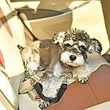 jdon-pet, Hund Auto Reise Seat Gürtel Lefdy Starke Pet/Dog Lead Restraint Harness (Size : L)