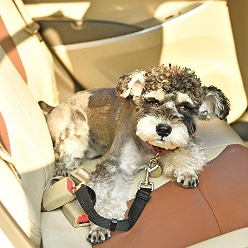 zhou-Haustier, Hund Auto Reise Seat Gürtel Lefdy Starke Pet / Dog Lead Restraint Harness ( Size : L )